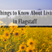 5 Things to Know About Living in Flagstaff