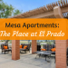 Mesa Apartments : The Place at El Prado