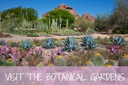 Desert-Botanical-Garden-Entrance