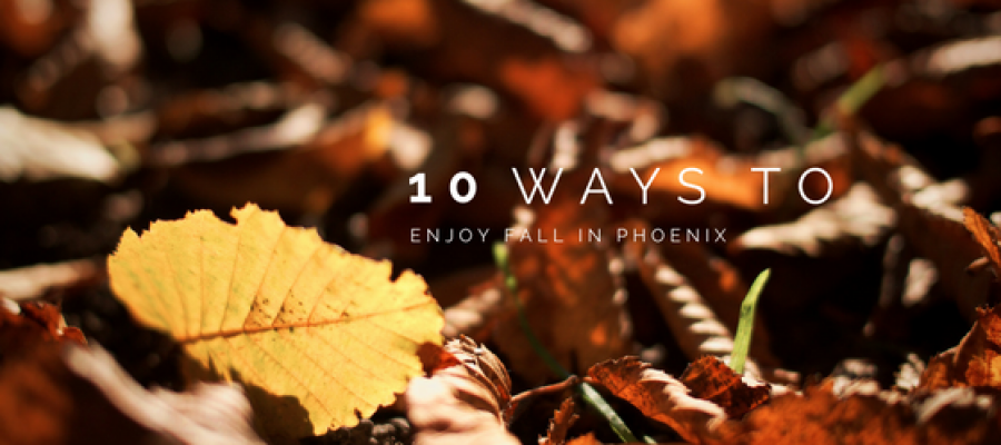 10 Ways to Enjoy Fall in Phoenix this Year