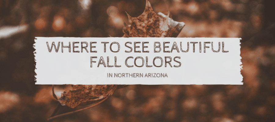 Where to See Beautiful Fall Colors in Northern Arizona