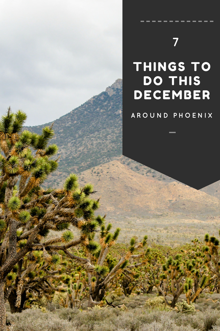 Things To Do This December Around Phoenix MCLife Phoenix - 12 things to see and do in phoenix