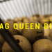 Events You Might've Missed: Drag Queen Bingo