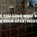 Yes, Your Apartment Smells. No, It Doesn't Have To