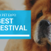 The Phoenix Pet Expo: The Best Pet Festival in the Valley