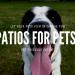 It's Patio Season People: 5 Of The Best Pet Friendly Patios In Phoenix