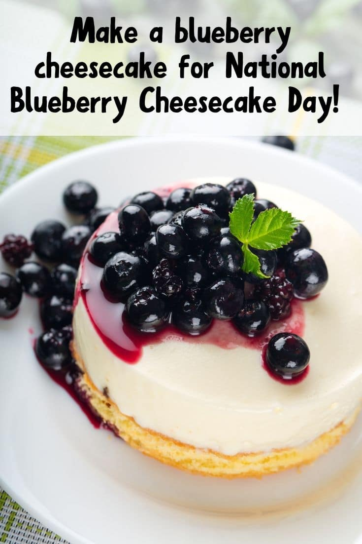 Beautiful blueberry cheesecake with fresh berries and mint on top. Whole cheesecake on a plate.